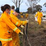 CFA volunteers rebuilding fences